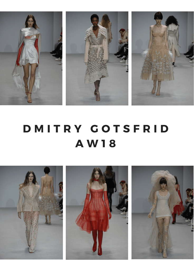 DMITRY GOTSFRID AW18-2